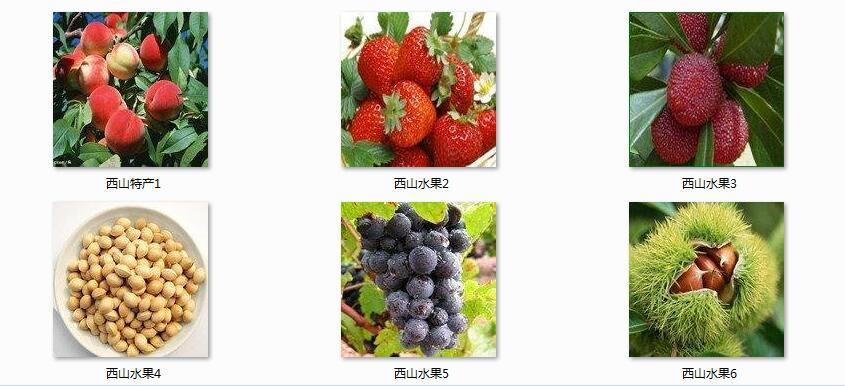 水果案例3.jpg